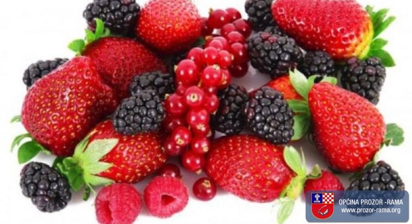 JAVNI POZIV za odabir korisnika/ca za podizanje nasada jagodičastog voća