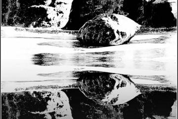 Fotosafari - 2010